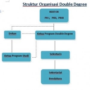 struktur organisasi double degree